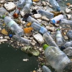 The Oceans will Contain more Plastic than Fish by 2050