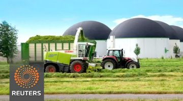 Super Grass could improve Farming, also help Provide an Alternative to Fracking
