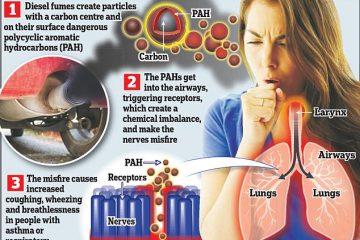 Diesel Fumes Pollution